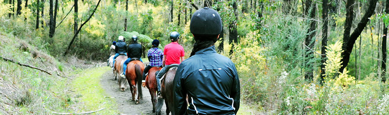 slider-horse-riders